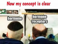 Hormone and Hormone receptor easy concept - Funny and hilarous medical pictures and memes - Medical Institution