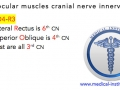 Extraocular Muscles Cranial-nerve Innervation Mnemonic - Medical Institution