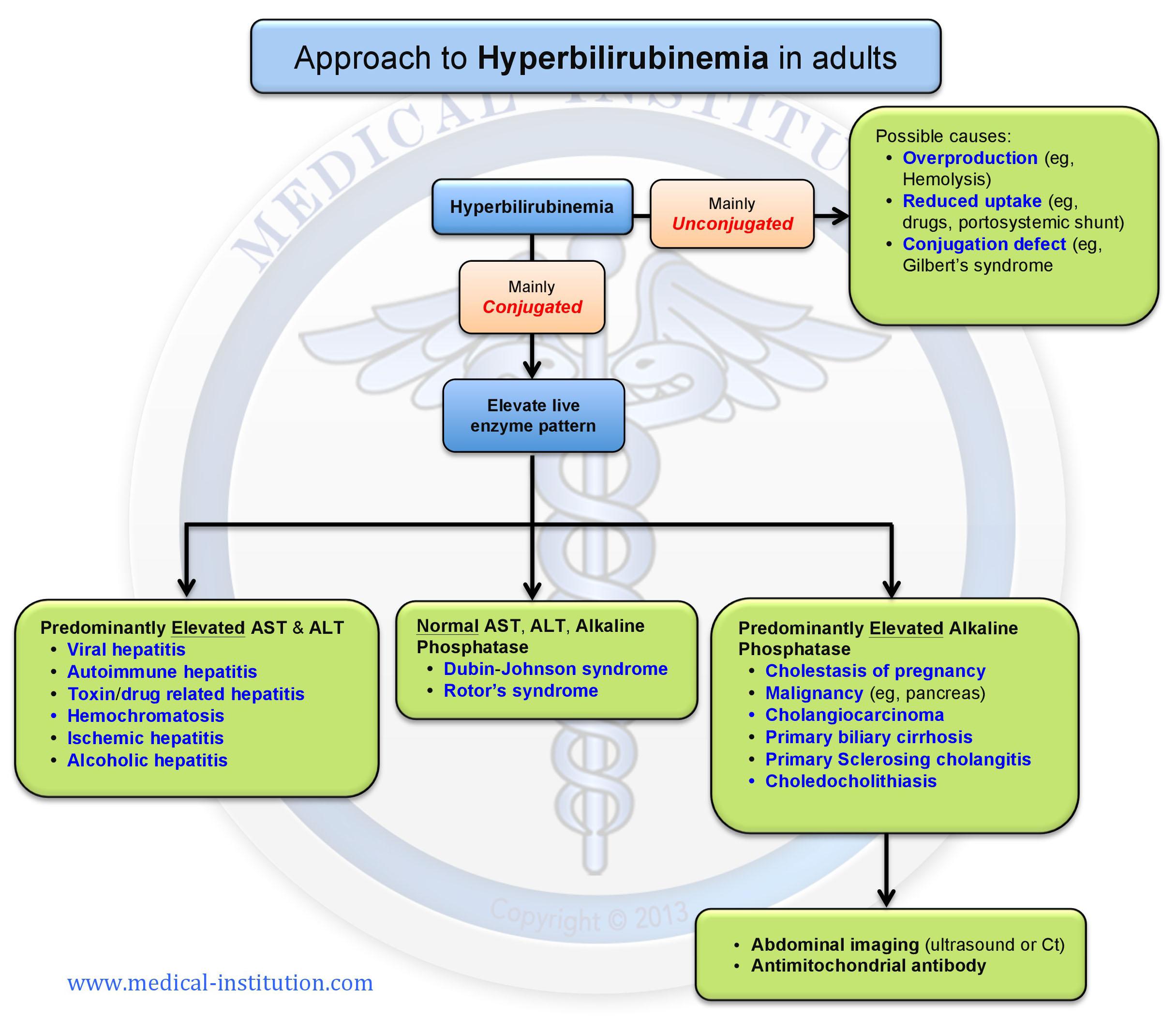 Hyperbilirubinemia differential diagnosis - Medical Institution