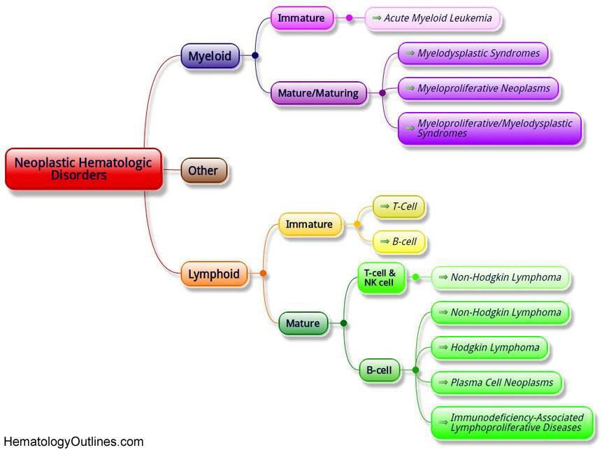 Neoplastic Hematologic Disorders Differential Diagnosis - Medical Institution