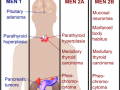 Multiple Endocrine Neoplasia Differential Diagnosis - Medical Institution