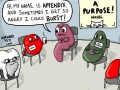 Non-Essential Organ Support Group - Funny Medical Pictures
