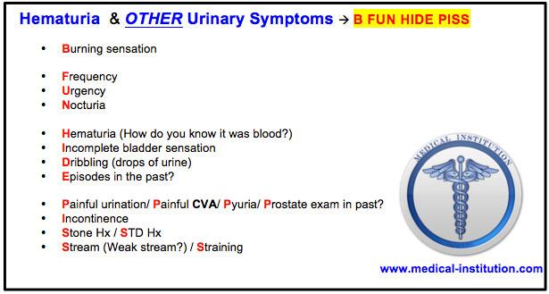 Hematuria Bloody urine USMLE Step 2 CS